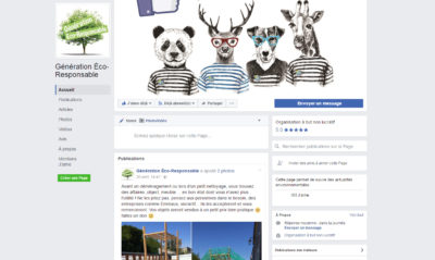 interface page facebook GER